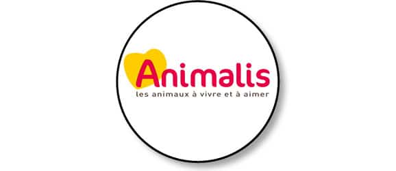 animalis-chien-chat