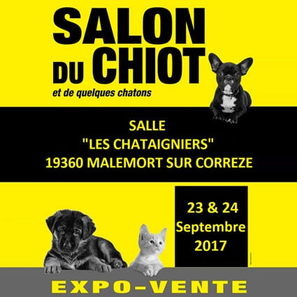 Salon du chiot et du chaton de brive la gaillarde for Salon du chiot reze 2017