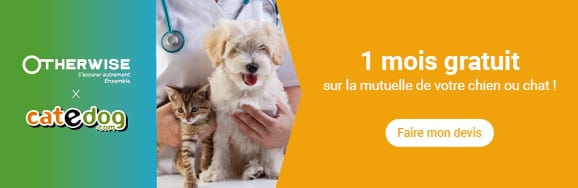 assurer-assurance-mutuelle-veterinaire-animal-otherwise