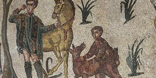 cirneco-de-etna-levrier-sicilien-gravure