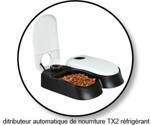 distributeur de pâté ou d'alimentation humide pour chat sans dent ou édenté
