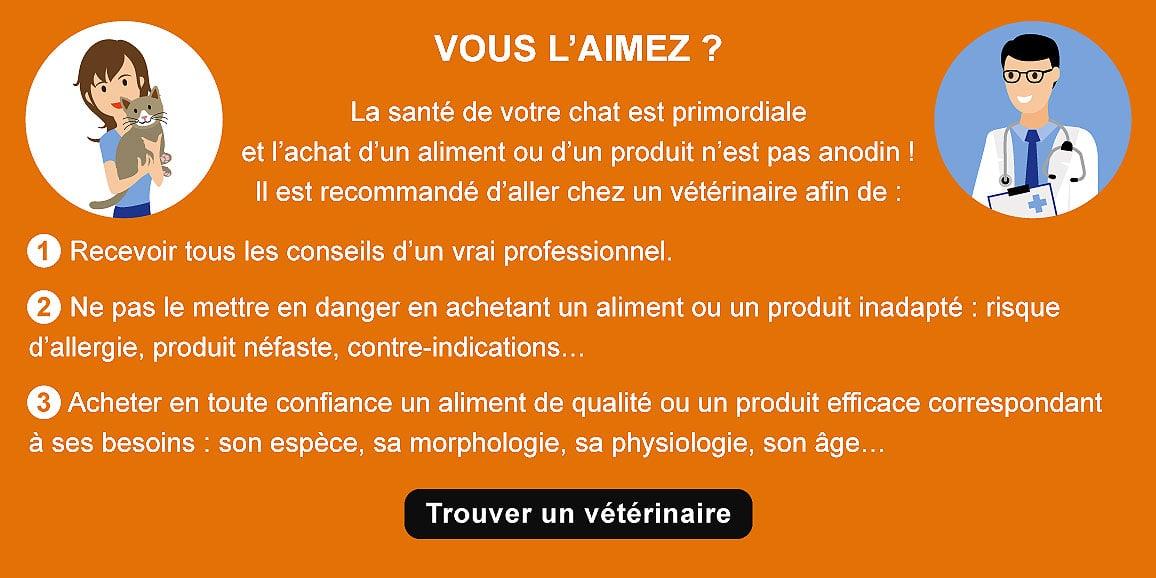 achat-sante-conseil-veterinaire-chat