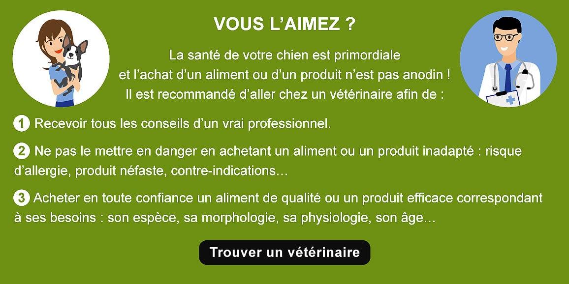 achat-sante-conseil-veterinaire-chien