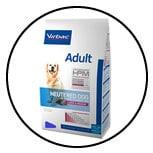 alimentation-chien-sterilise-castre-sterilisation-castration
