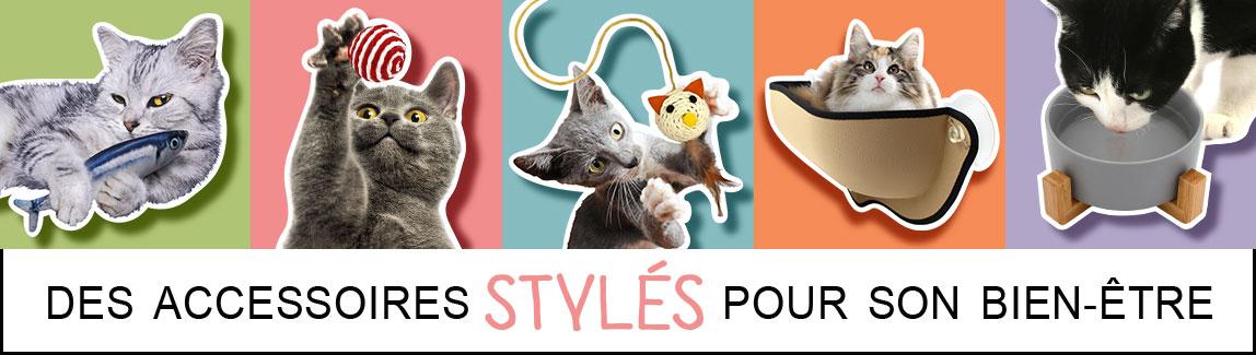 Acessórios de loja online para bate-papo e gatinho'accessoires pour chat et chaton