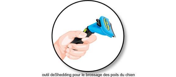 brossage-brosser-son-chien-outil-deshedding