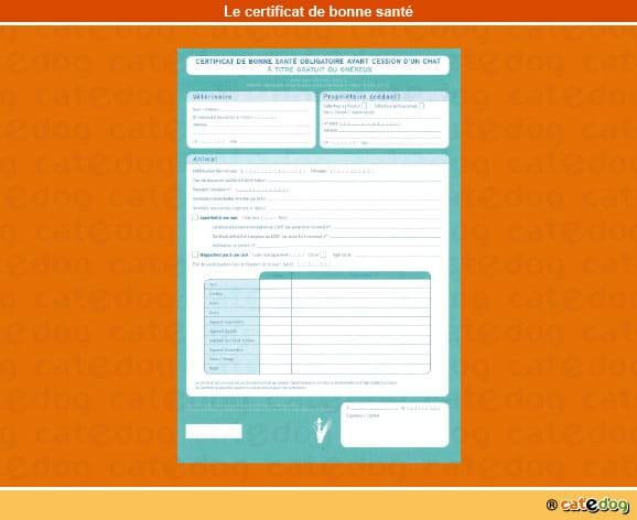 certificat_bonne_sante_chat
