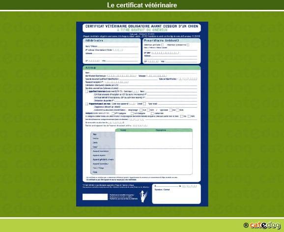 certificat_veterinaire_chien