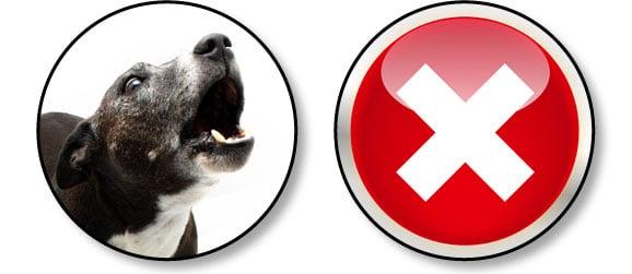 chiens-communiquent-en-aboyant