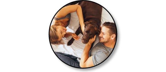conseil-reussir-adoption-chien-adulte