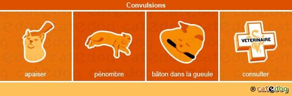 convulsions-chat