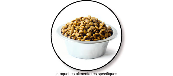croquettes-specifiques-nettoyer-brosser-dents-chat