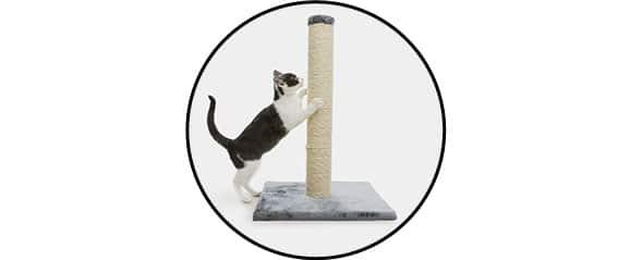 chat faisant ses griffes sur un griffoir vertical, haut et stable