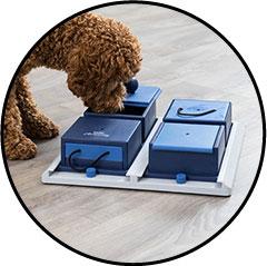 Jouet d'intelligence et de stratégie pour chien Dog Activity