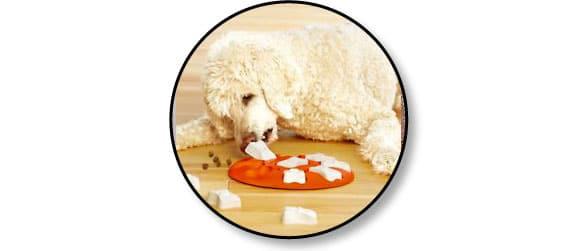 jouet-jeu-alimentaire-chien-croquette