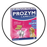 lamelle-macher-nettoyer-dents-chien-prozym