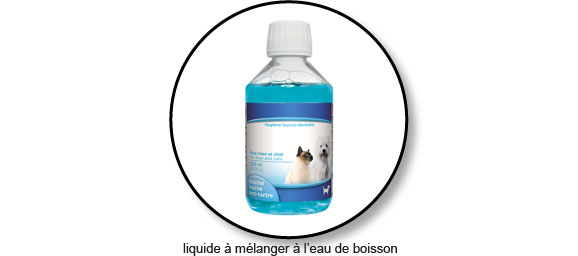 liquide-eau-nettoyer-brosser-dents-chat