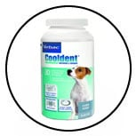nettoyer-dents-chien-dentifrice-cooldent-virbac