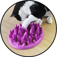 Plateau gamelle anti-glouton pour forcer le chat à manger lentement