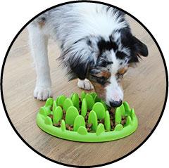 Plateau gamelle anti-glouton pour chien