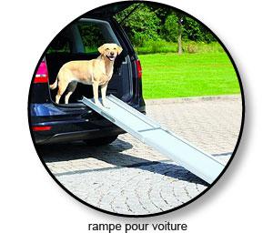 Rampe de voiture pour chien souffrant d'arthrose