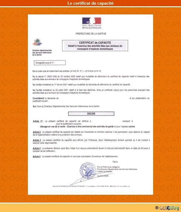 certificat-de-capacite_chat
