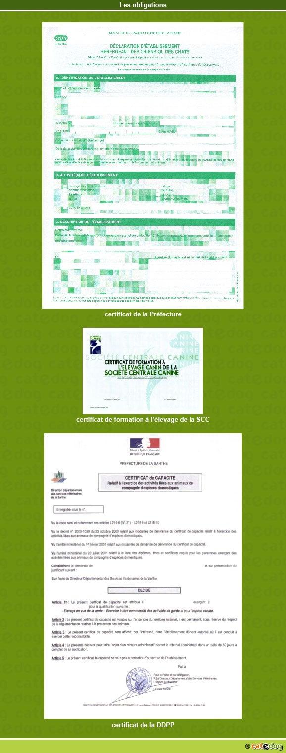 declaration_certificat_capacite_formation_elevage_scc_chien