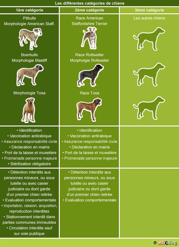 legislation-du-chien