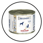 alimentation-nourrir-chien-recovery-royal-canin