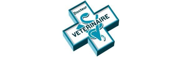 croix-veterinaire-chien-chat