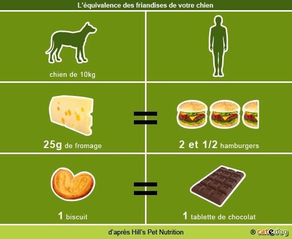 equivalensce-friandises_chien