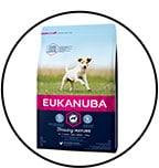 eukanuba-chien-senior