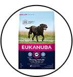 eukanuba-grande-race-senior