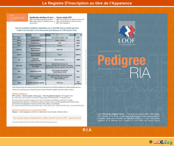 registre-inscription-au-titre-de-apparence_ria_chat