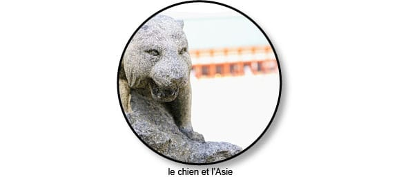 asie_chien