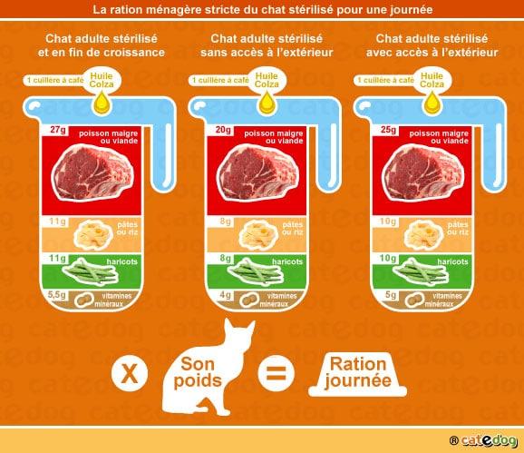 alimentation-ration-menagere-chat-sterilise-castre