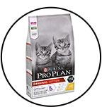 purina-proplan-original-kitten
