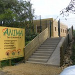 anima-pension_catedog.com