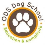ODS-dog-school_catedog.com