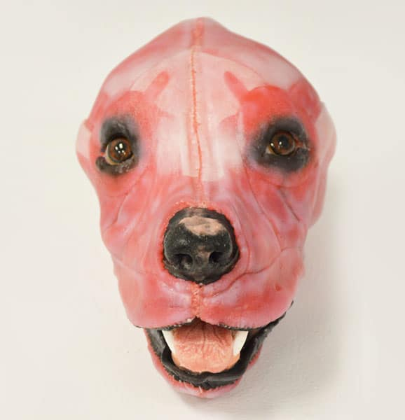 chien_synthetique_SynDaver_euthanasie_veterinaire_catedog