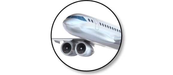 voyage_avion_chien_chat_catedog