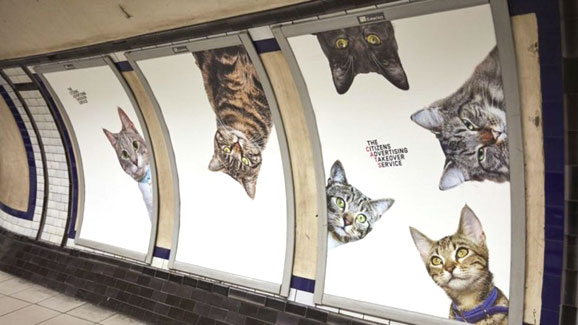 affiches_chats_metro_londres_3