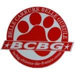 bcbg-belle-carrure-belle-gueule