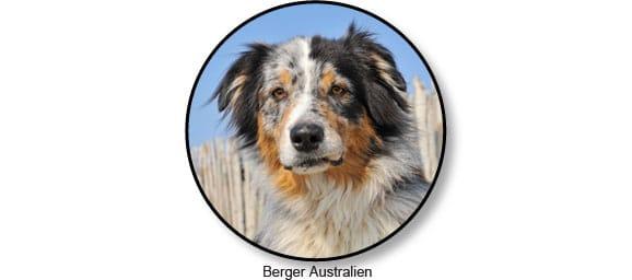 berger-australien