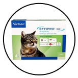 pipette-spot-on-puce-tique-chat-virbac