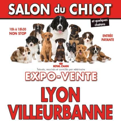 Salon du chiot de lyon villeurbanne conseil v to - Salon du chiot et du chaton ...