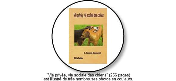 vie-privee-vie-sociale-des-chiens