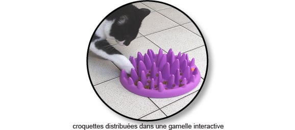 croquettes-jouet-alimentaire-gamelle-interactive-chat