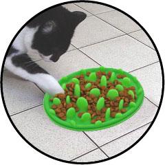 Gamelle plateau anti glouton croquettes pour chat