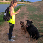 educateur-canin-canis-felis-&-co-3